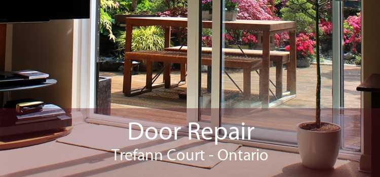 Door Repair Trefann Court - Ontario