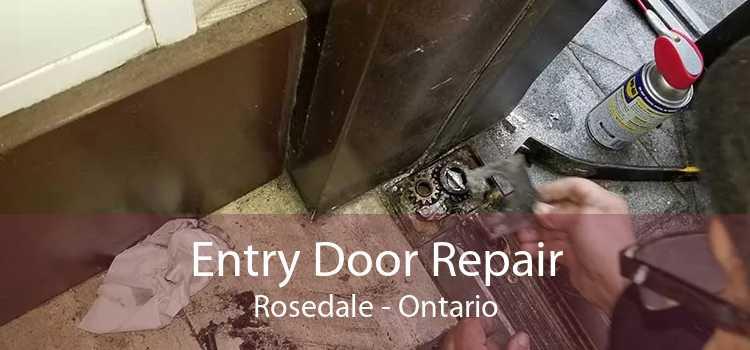 Entry Door Repair Rosedale - Ontario