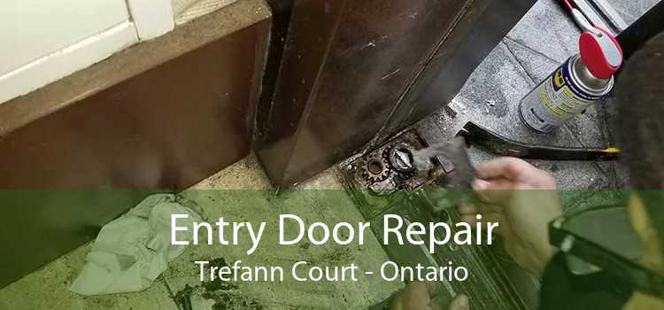 Entry Door Repair Trefann Court - Ontario
