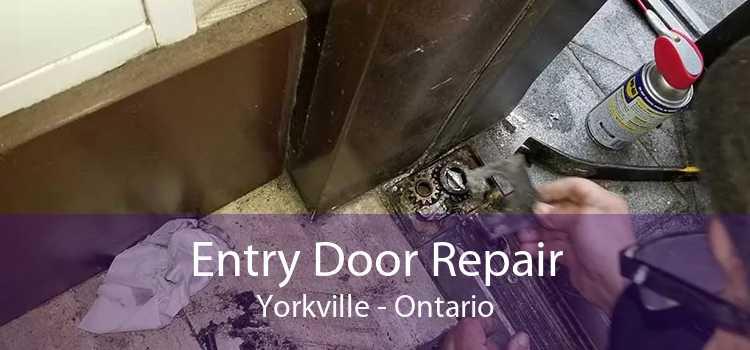 Entry Door Repair Yorkville - Ontario