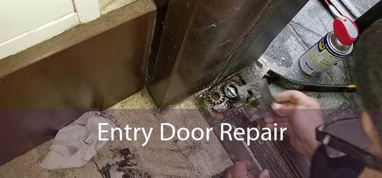 Entry Door Repair