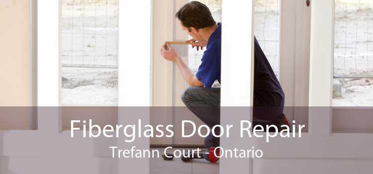 Fiberglass Door Repair Trefann Court - Ontario