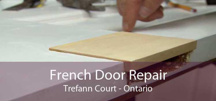 French Door Repair Trefann Court - Ontario