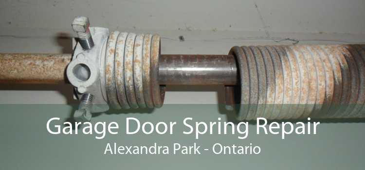 Garage Door Spring Repair Alexandra Park - Ontario