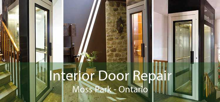 Interior Door Repair Moss Park - Ontario