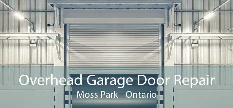 Overhead Garage Door Repair Moss Park - Ontario
