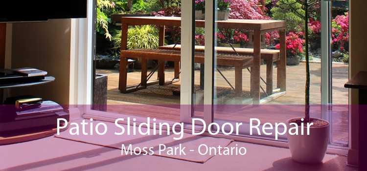 Patio Sliding Door Repair Moss Park - Ontario