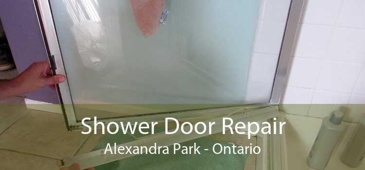 Shower Door Repair Alexandra Park - Ontario