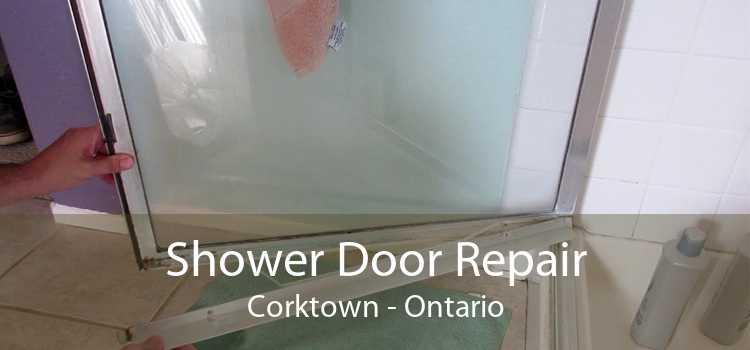 Shower Door Repair Corktown - Ontario