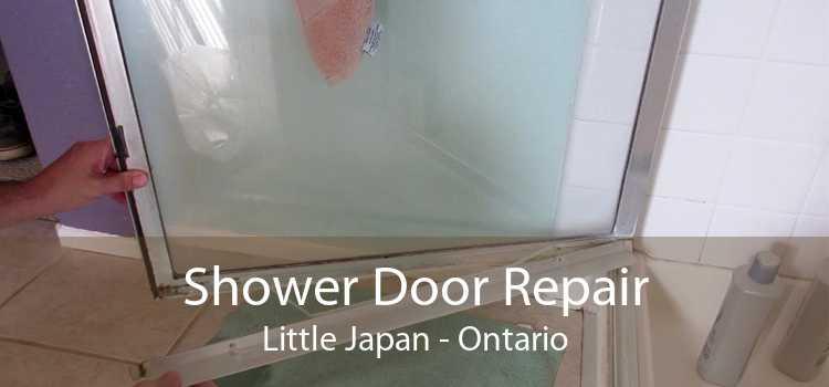 Shower Door Repair Little Japan - Ontario