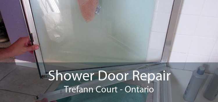 Shower Door Repair Trefann Court - Ontario