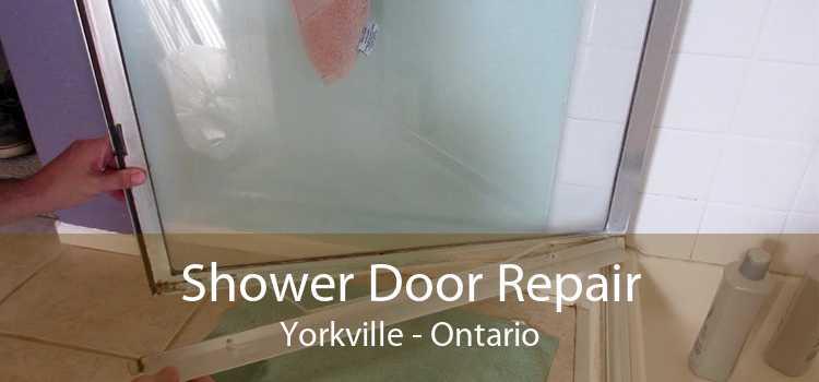 Shower Door Repair Yorkville - Ontario