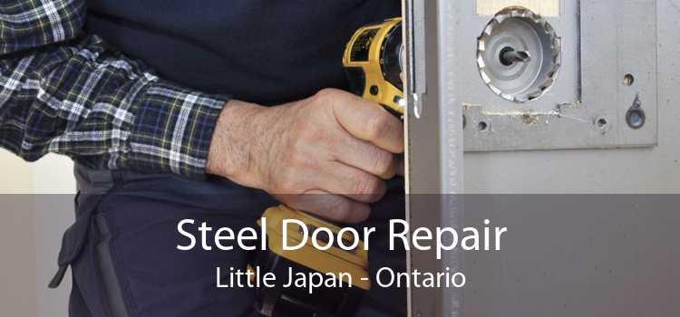 Steel Door Repair Little Japan - Ontario
