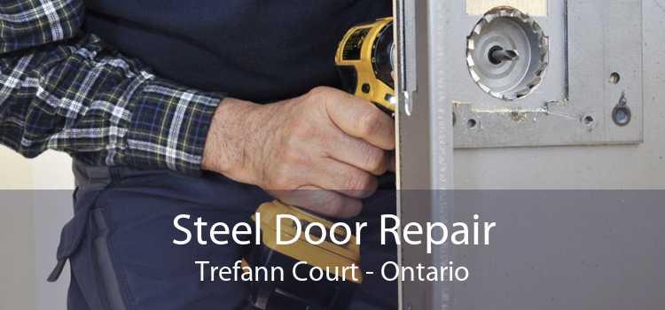 Steel Door Repair Trefann Court - Ontario